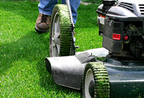 Chicago lawn maintenance services